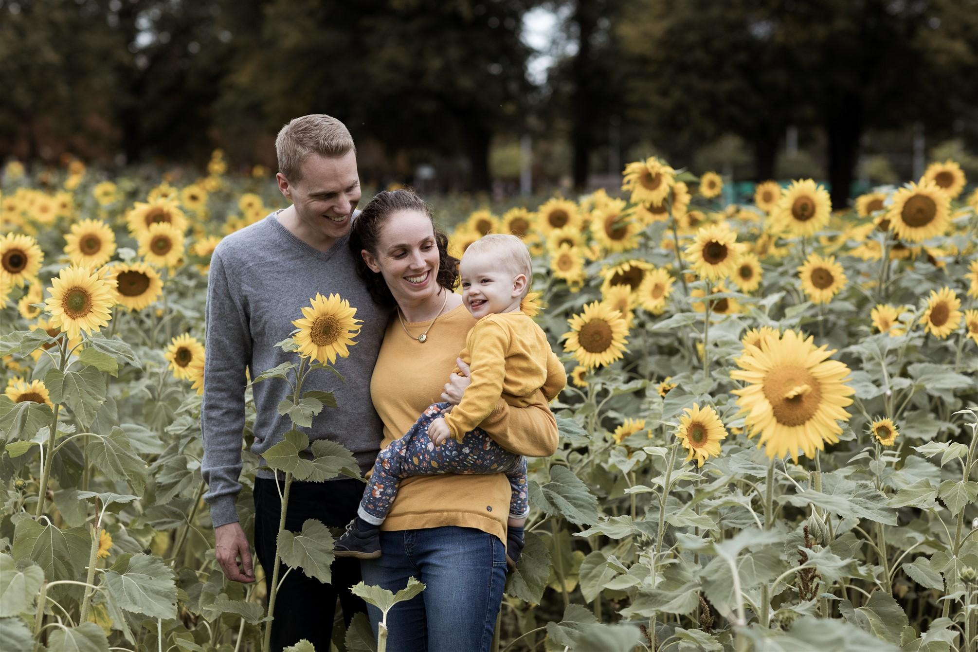 Familien Fotoshooting in Basel - Familienfotoshooting inmitten von Sonnenblumen