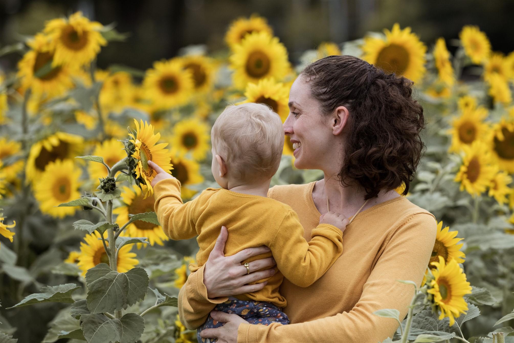Familien Fotoshooting in Basel - Familienfotoshooting inmitten von Blumen