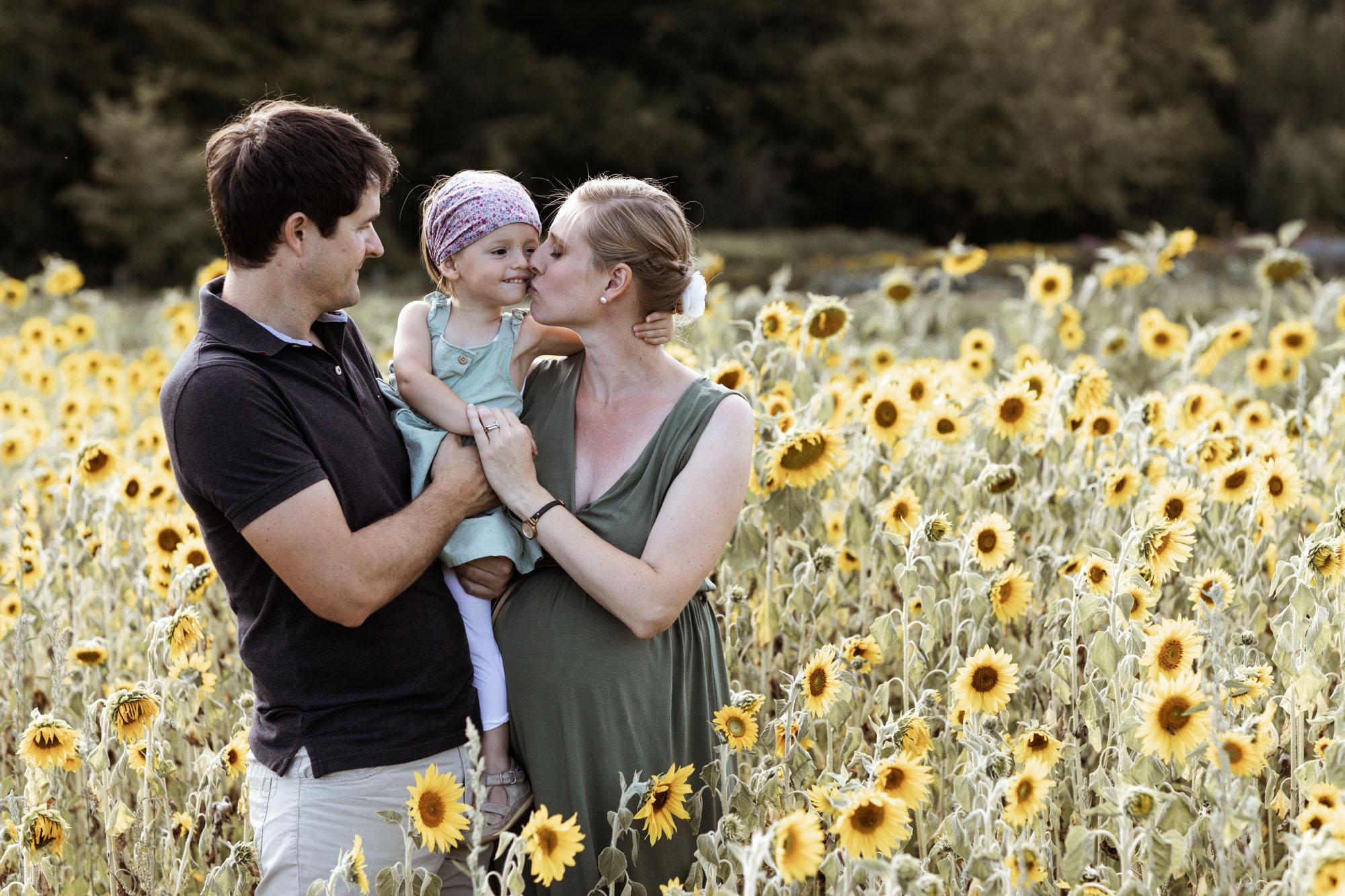 Babybauch und Familienfotoshooting in den Merian Gärten - Die Familie im Sonnenblumenfeld